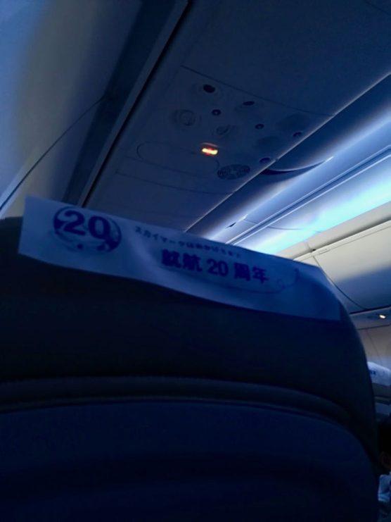 ブルーのLED照明が灯ったスカイマーク機内