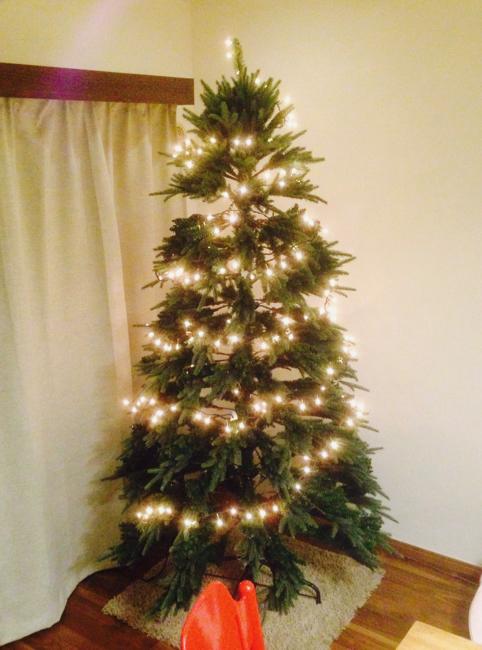 [レビュー : 中城産業のクリスマスツリー]リアルで大きいクリスマスツリーが欲しい!「210cm ブランデックツリー」を買いました。