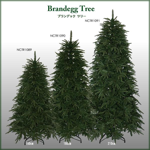 ブランデックツリーのサイズ展開