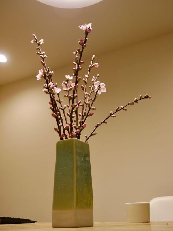 食卓に花があると、なんだかとてもいい…!_マルキの育児グッズブログ